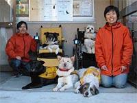 日本聴導犬協会